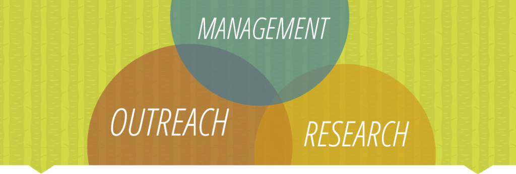 Management, Outreach & Research Graphic