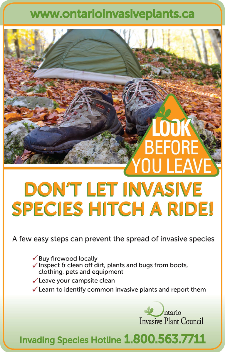 Don't let invasive species hitch a ride!