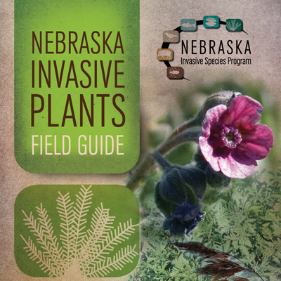 Invasive Plants Field Guide