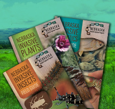 Field Guides and Brochures